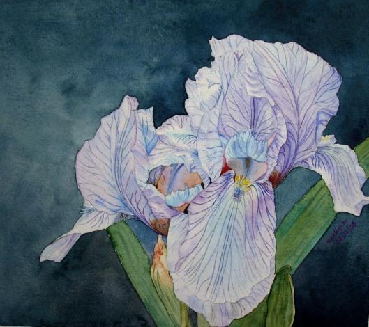 final iris background