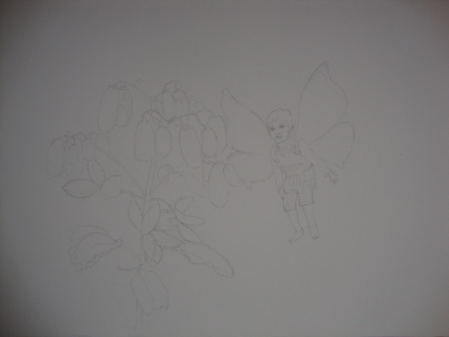 Light in fairyland , drawing