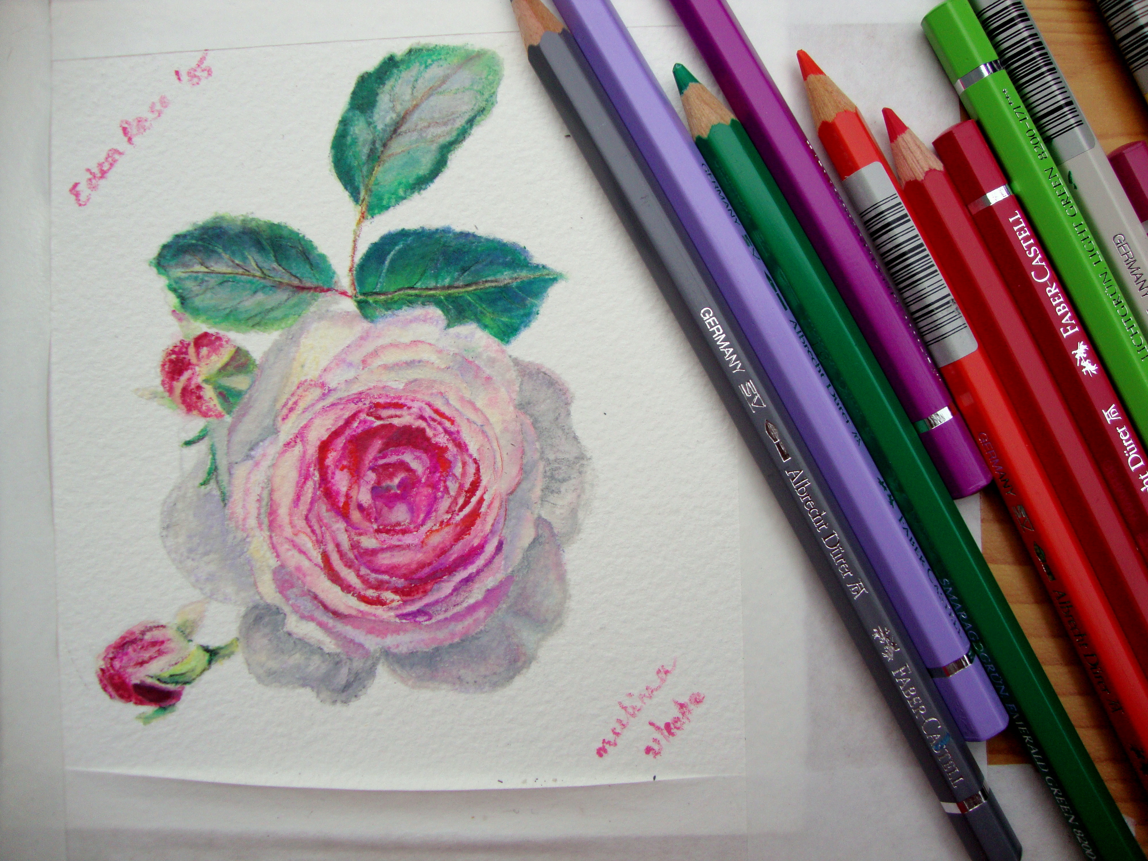 how to draw with watercolor pencils
