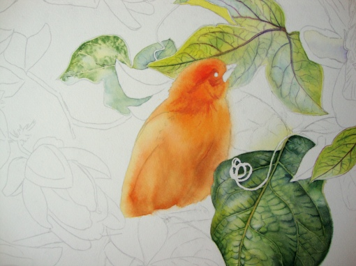 third layers