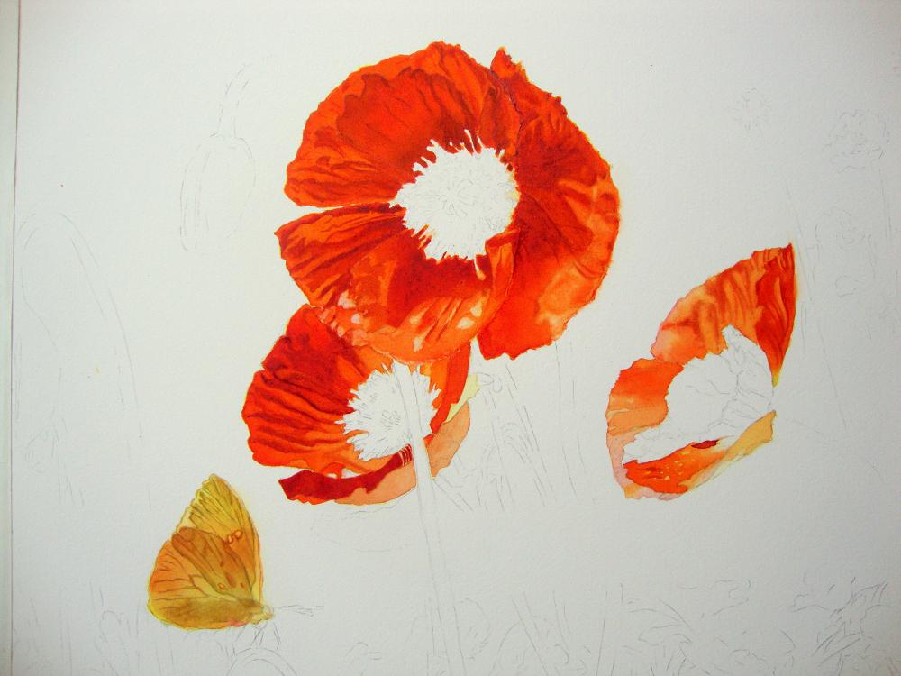 Painting creases and folds on flowers watercolor journal - How to paint poppy flowers ...