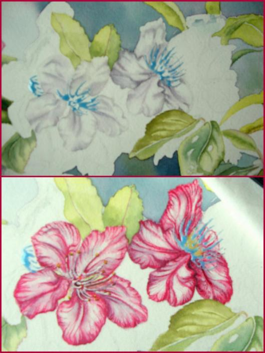 layers for flowers