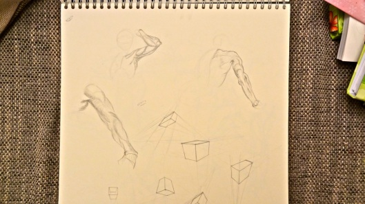 Arm studies (Glenn Vilppu)