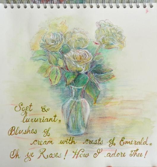 Cream Roses Sketch