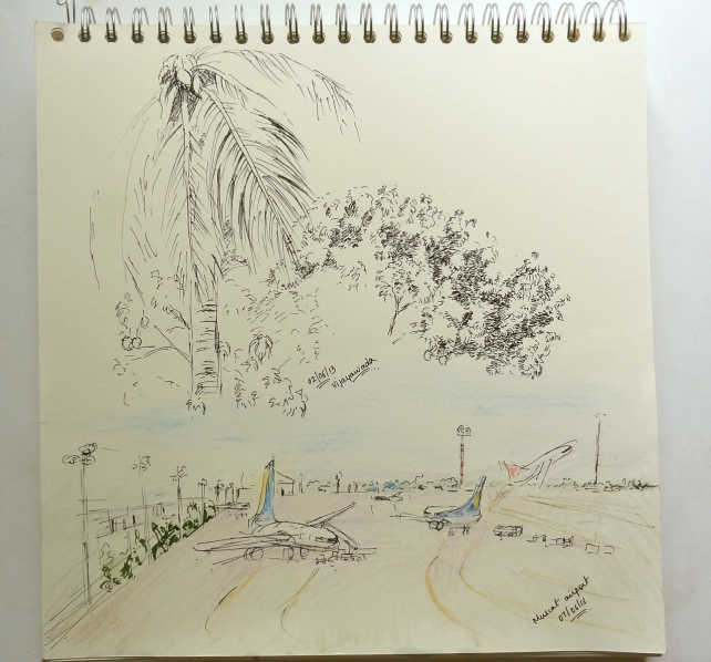 sketchbook page - mango trees