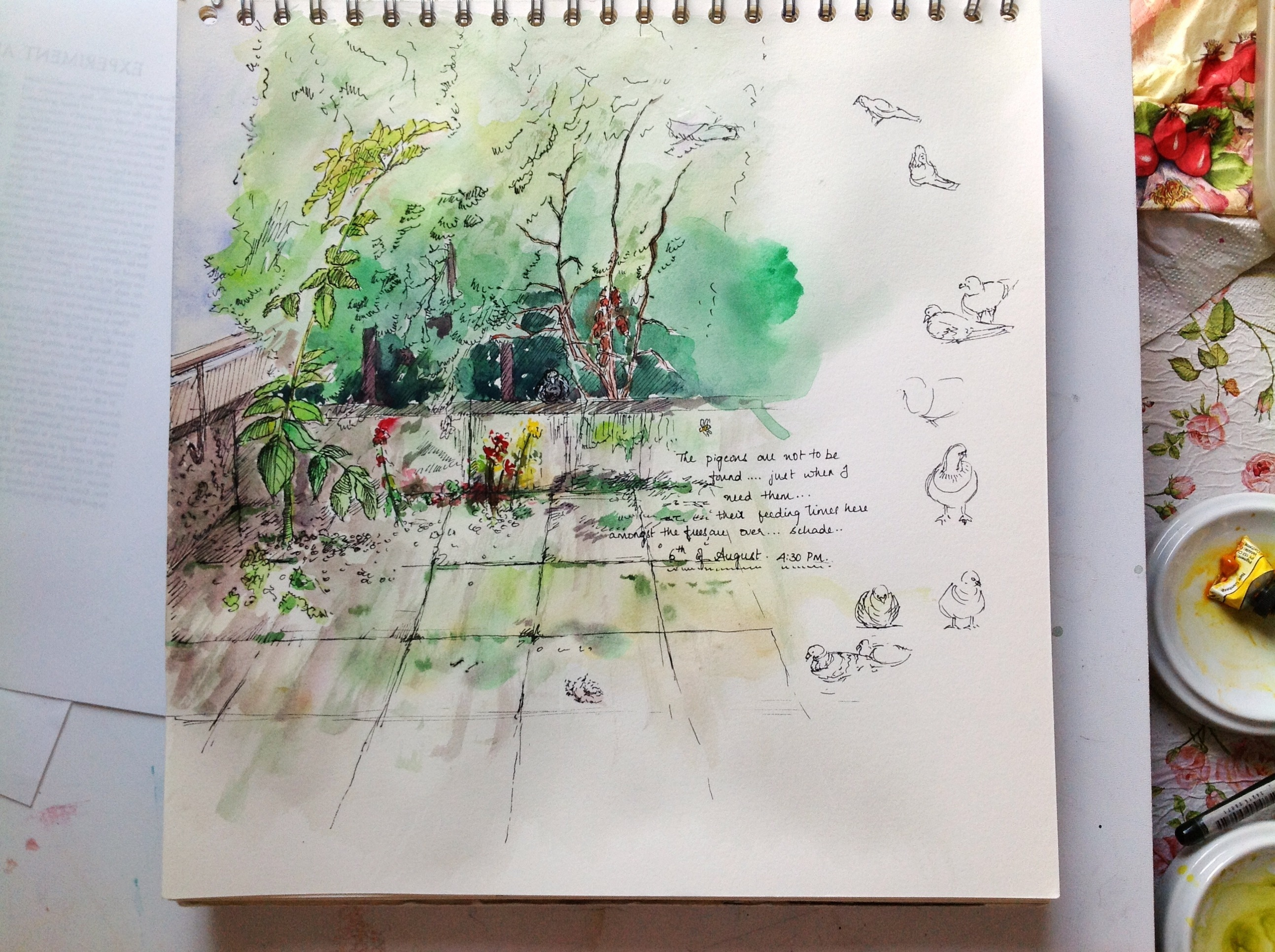 Corner of backyard sketch