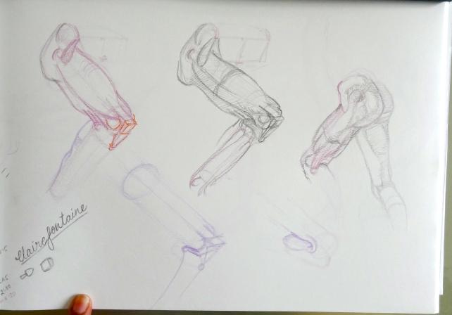 Leg studies from Vilppu
