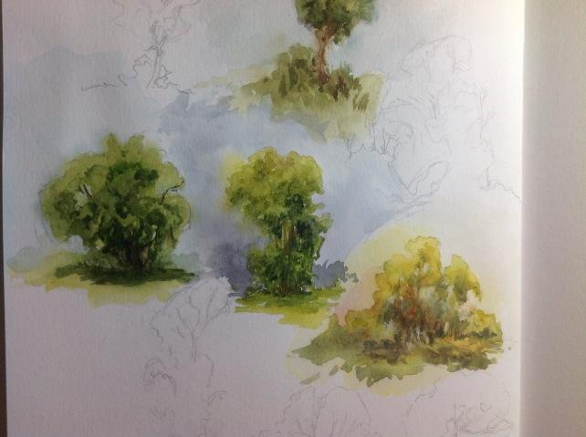 Light in landscape