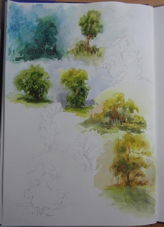 landscapecolorstudies