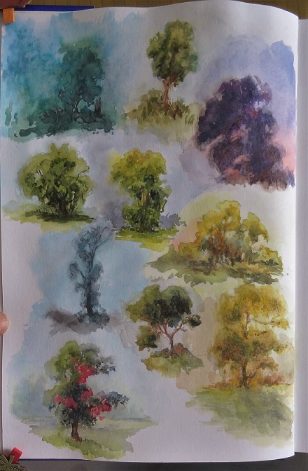 trees_in_various_lightingconditions
