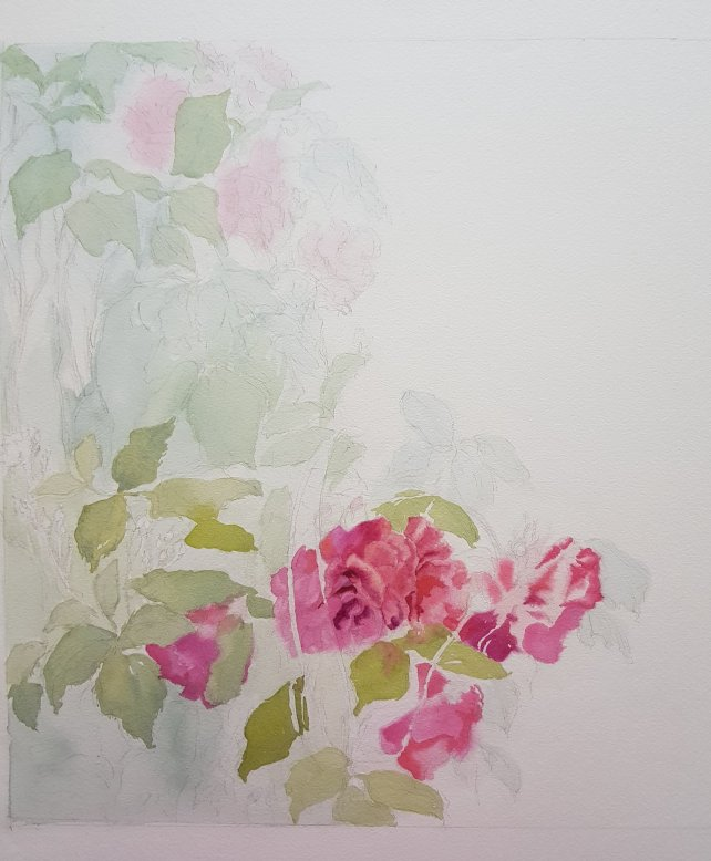 First washes roses painting