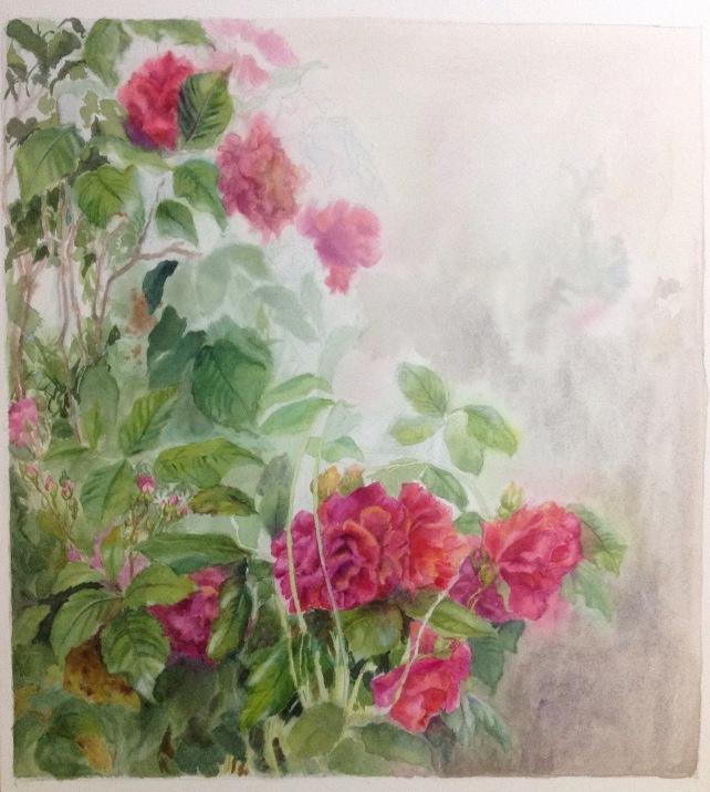 Rose painting WIP