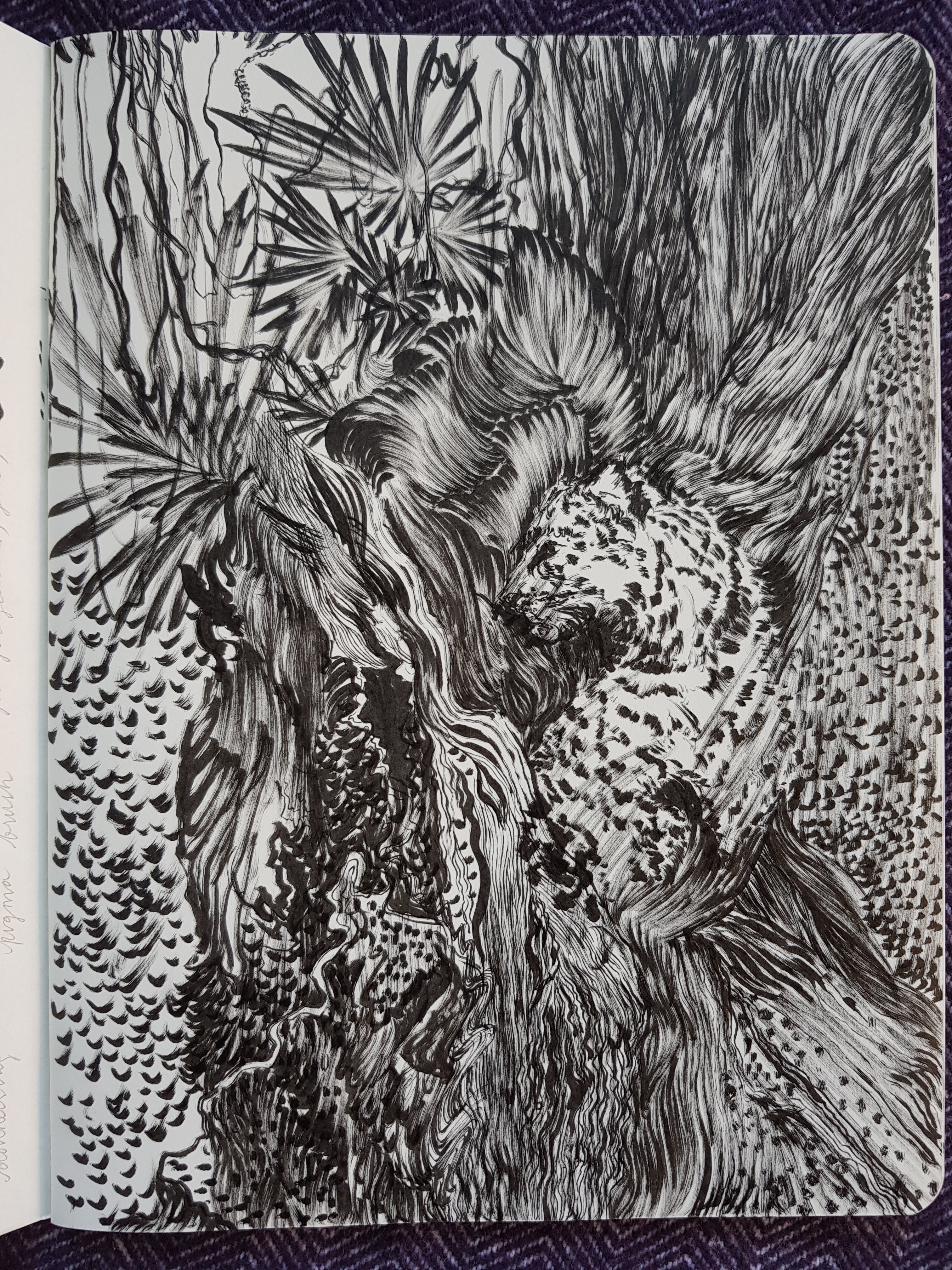 sketchbook page - leopard - jungle